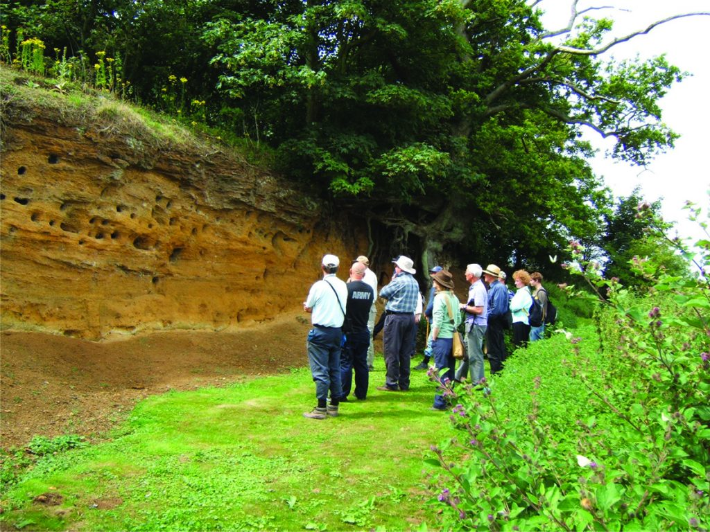 Essex Rock and Mineral society outing